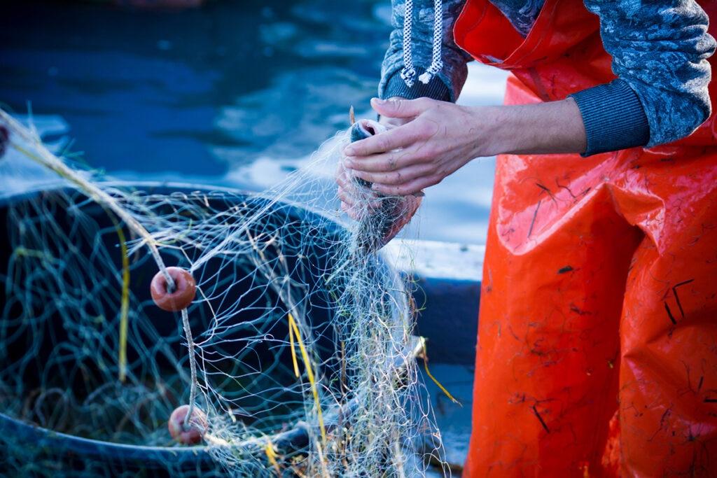 Qué es la pesca sostenible