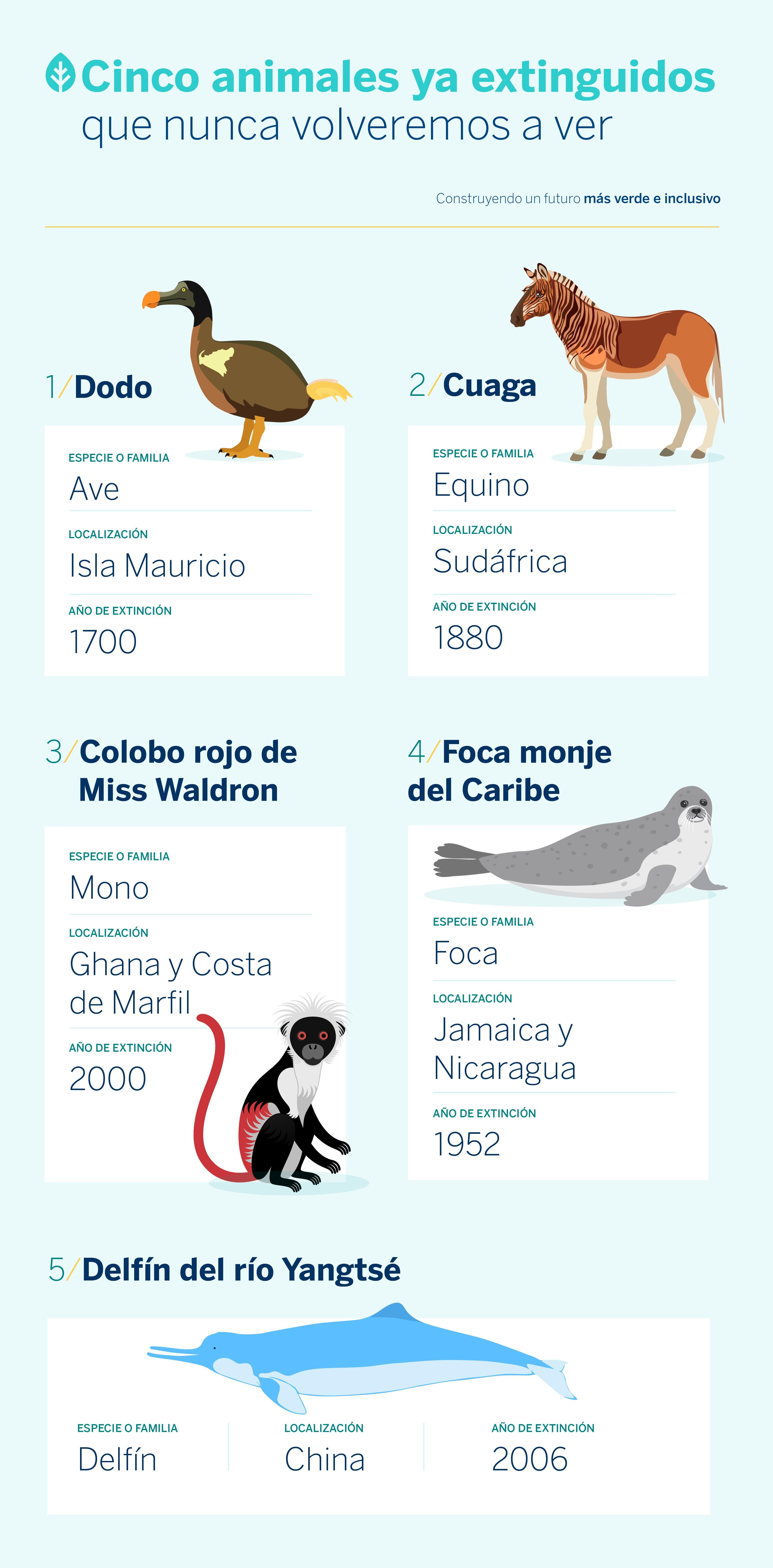 animales-extintos-extincion-planeta-biodiversidad-bbva-sostenibilidad