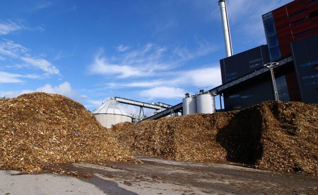 biomasa-materia-energia-renovable-basura