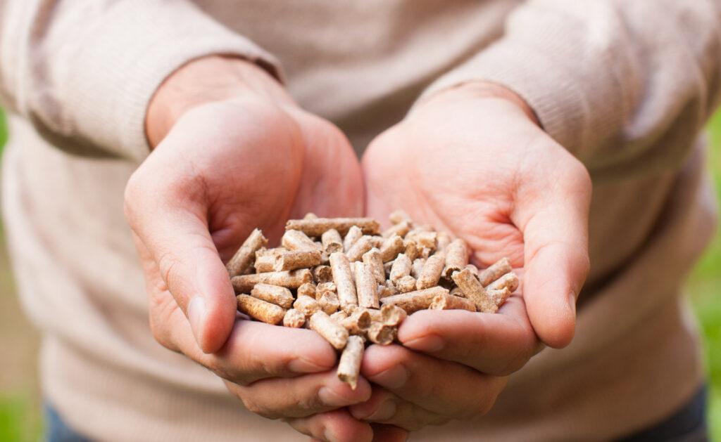 biomasa_apertura-sostenibilidad-gases-cuidado-medioambiente