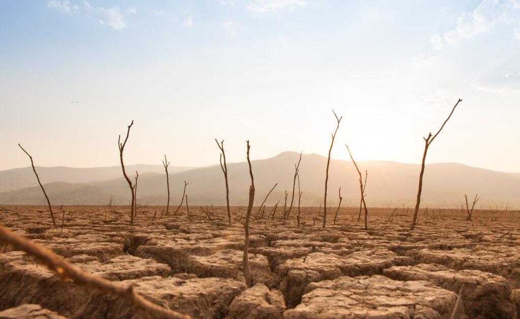 cambio_climático_sostenibilidad