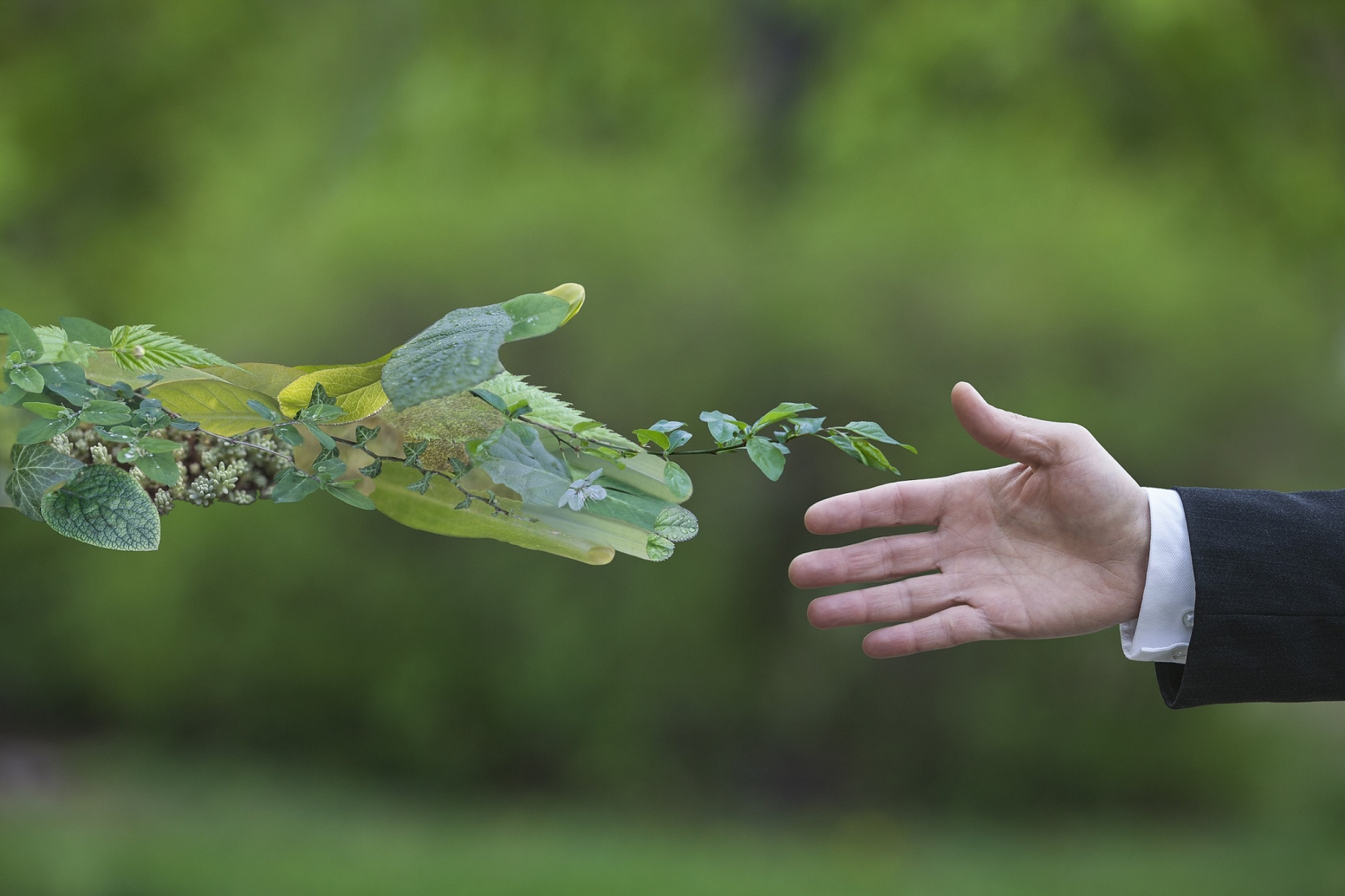 inversiones verdes clientes mayoristas ESG