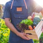 sostenibilidad-BBVA-horticultura-agricultura-alimentacion