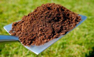 BBVA_compost_fases-poder_suelo_vivo-Fase_de_maduracion