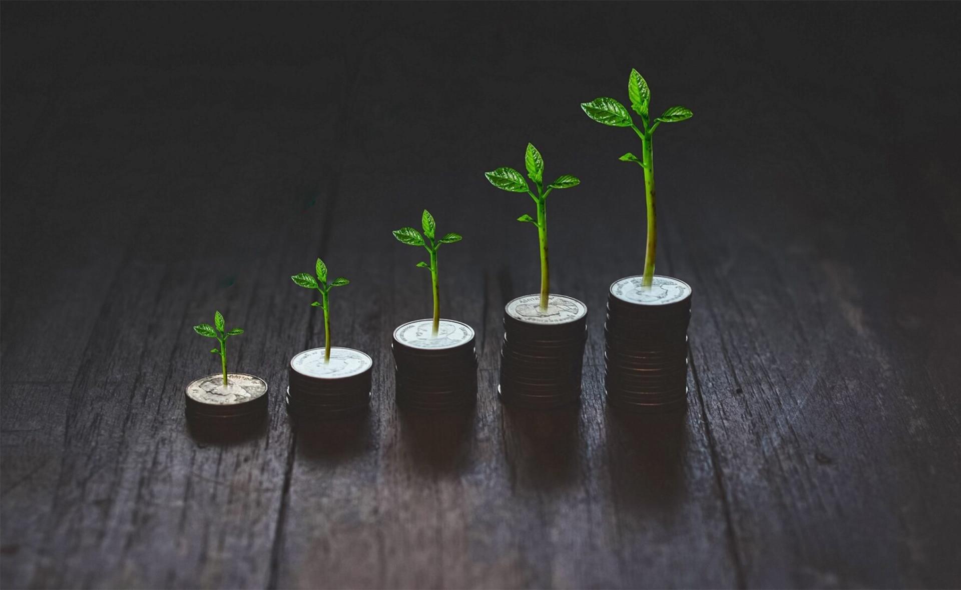 BBVA-nemak-colocación-primer-bono-euros-sostenibilidad