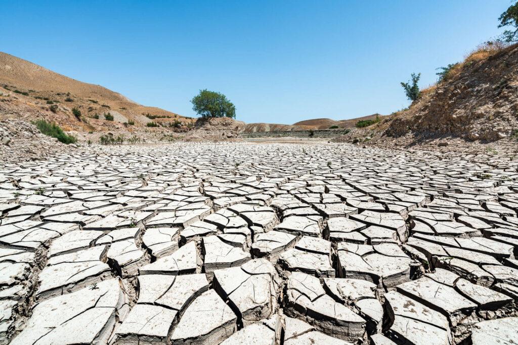 bbva-amenazas-sequedad-tierra-clima-calentamiento-planeta-medioambiente-sostenibilidad