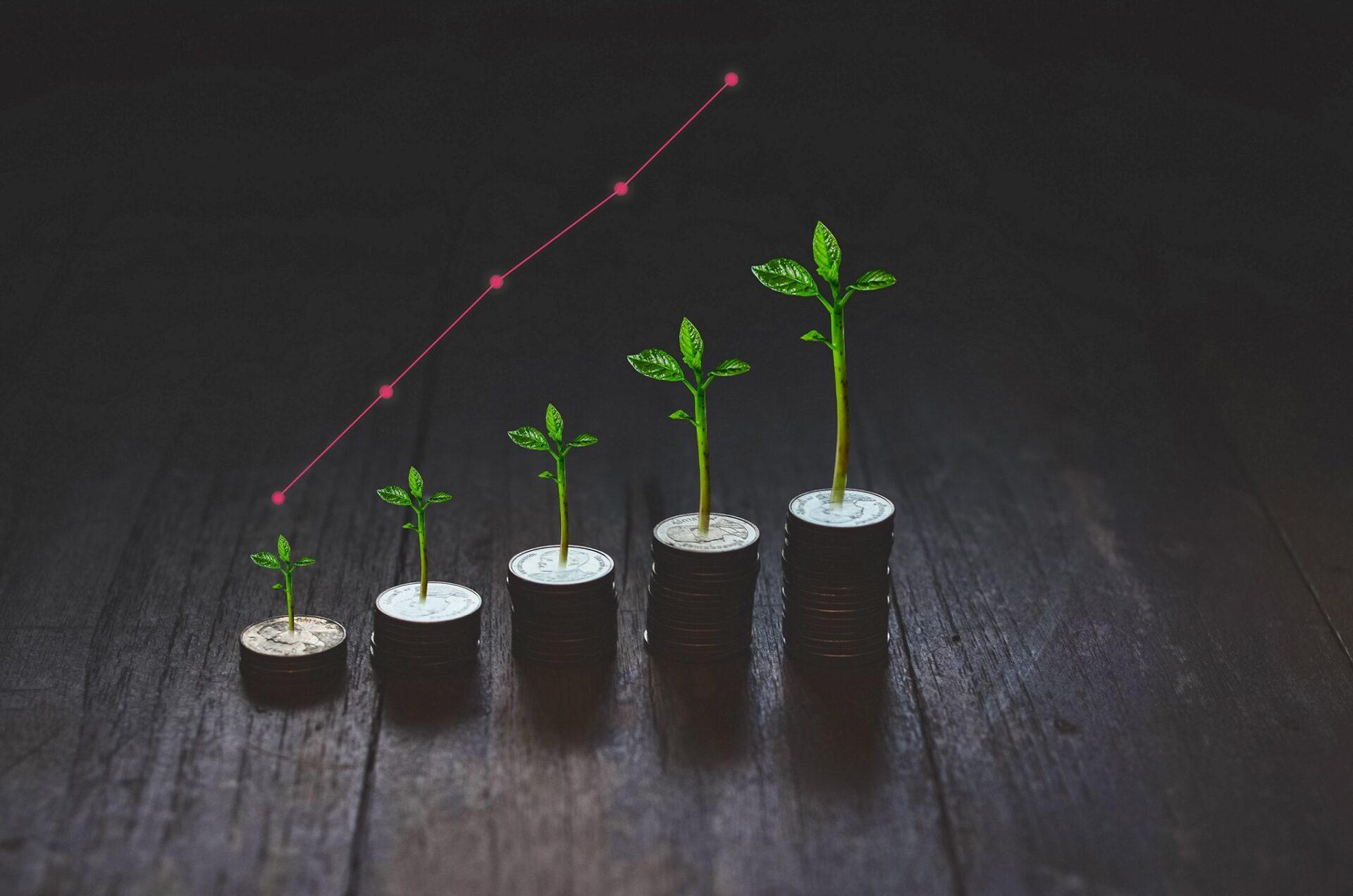 finanzas colocación sostenible