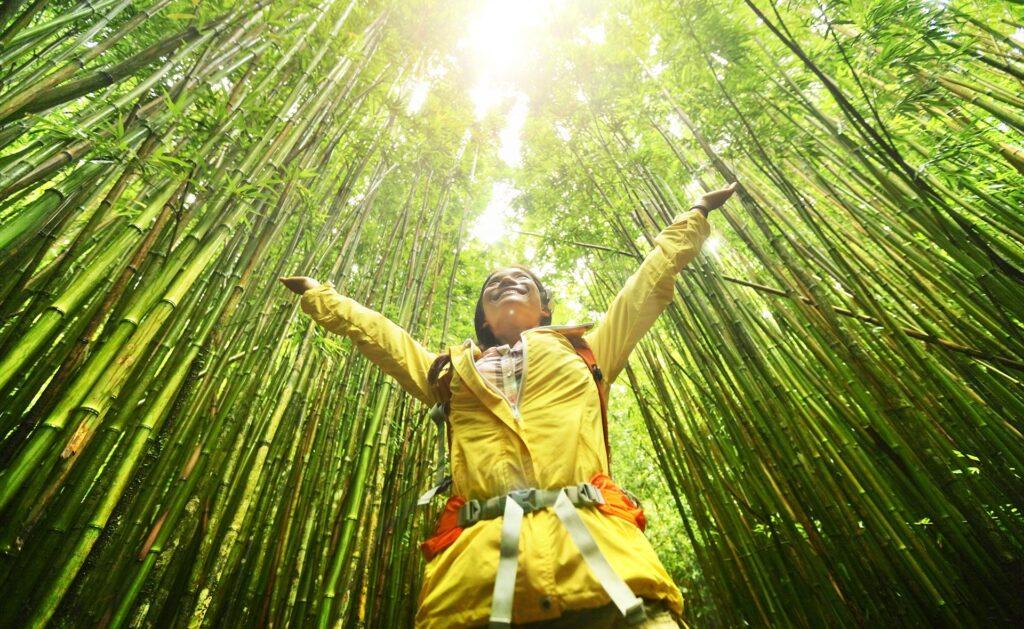 recursos_renovables-sostenibilidad-bbva-consejos-planeta-cuidados