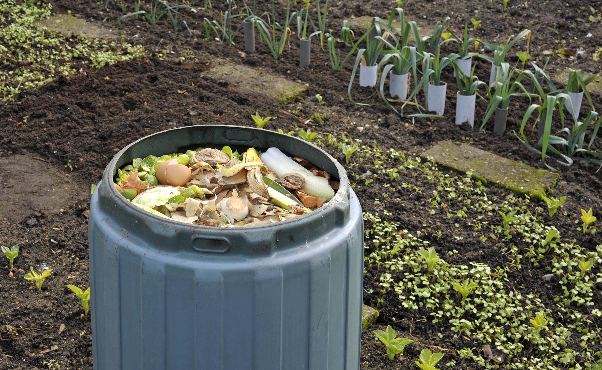 BBVA-podcast-futuro-sostenible-compost-abono-organico-casa