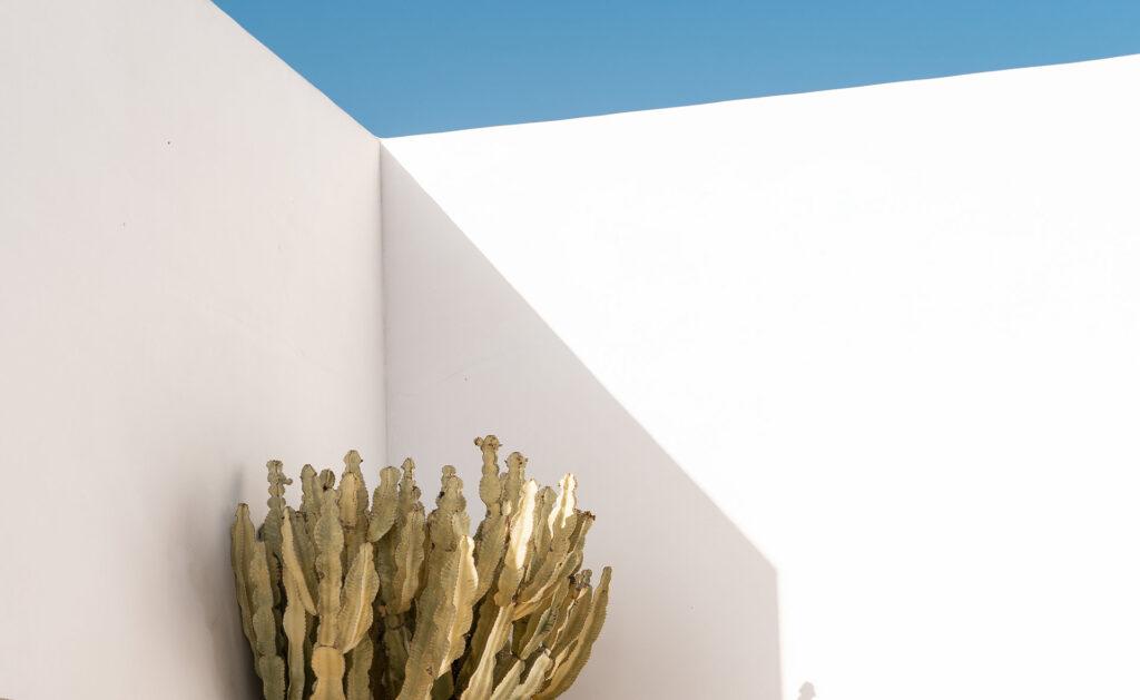 Arquitectura-sostenible-casas-ecológicas-bbva-Pablo-Farfán