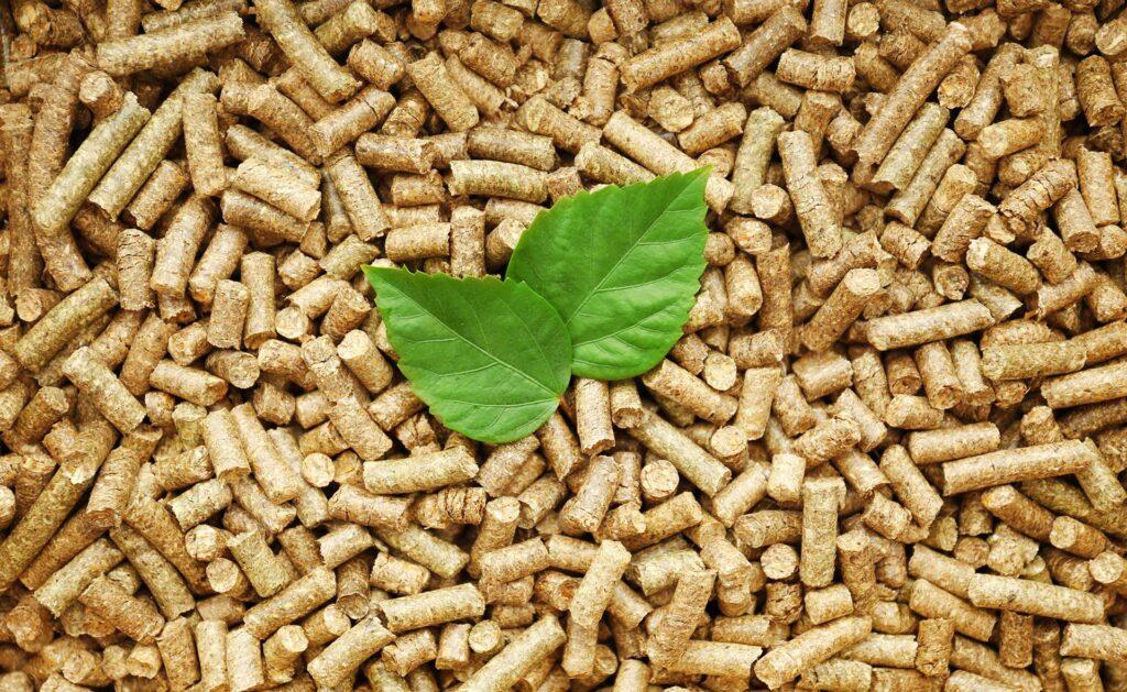 BBVA-biomasa-sostenibilidad-tierra-cultivo