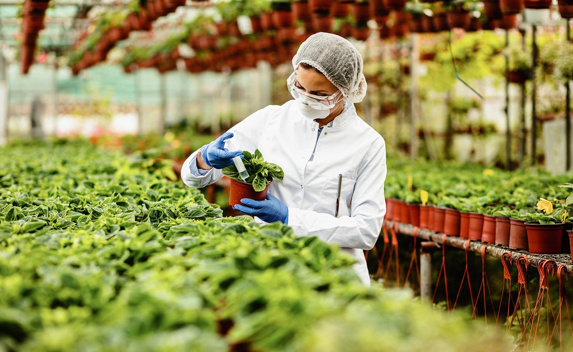 BBVA-biotecnología-agrícola-sostenibilidad-cultivo-agricultura-innovacion-terrenos