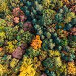 BBVA-fintech_implantar_economia_verde_sostenibilidad