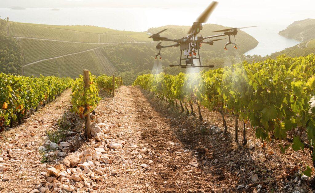 BBVA-sostenibilidad-agricultura-precision