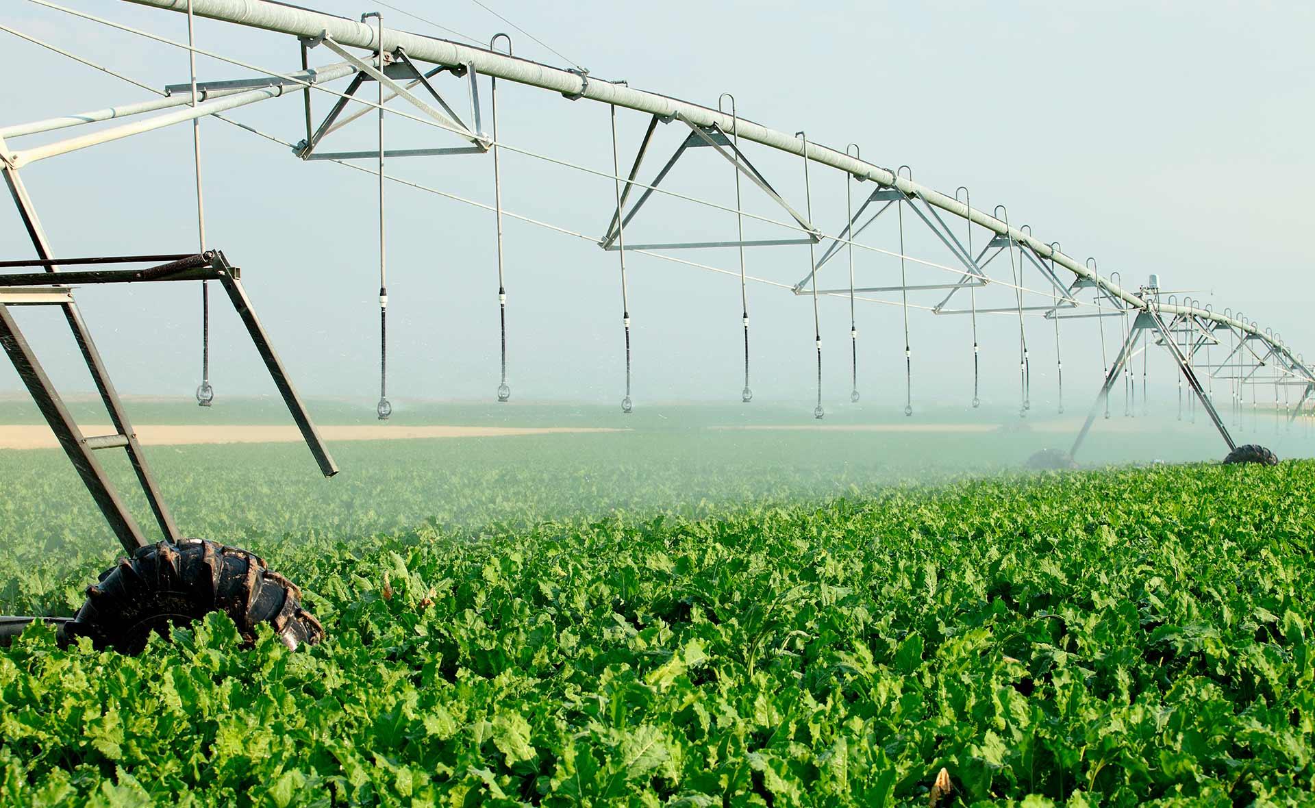 BBVA-tecnologias_riego_eficientes-sostenibilidad-innovacion-agua-cuidado-cultivos