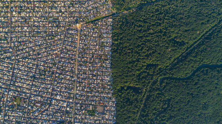 Boca del Rio Selva. Cortesía de Santiago Arau