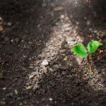 Principios-de-Banca-Responsable-de-Naciones-Unidas-compromiso-sostenible-bbva-ods-banca-responsable