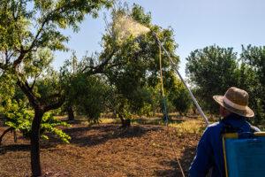 Sustancia-activa- COS-OGA-sostenibilidad-bbva-insecticidas
