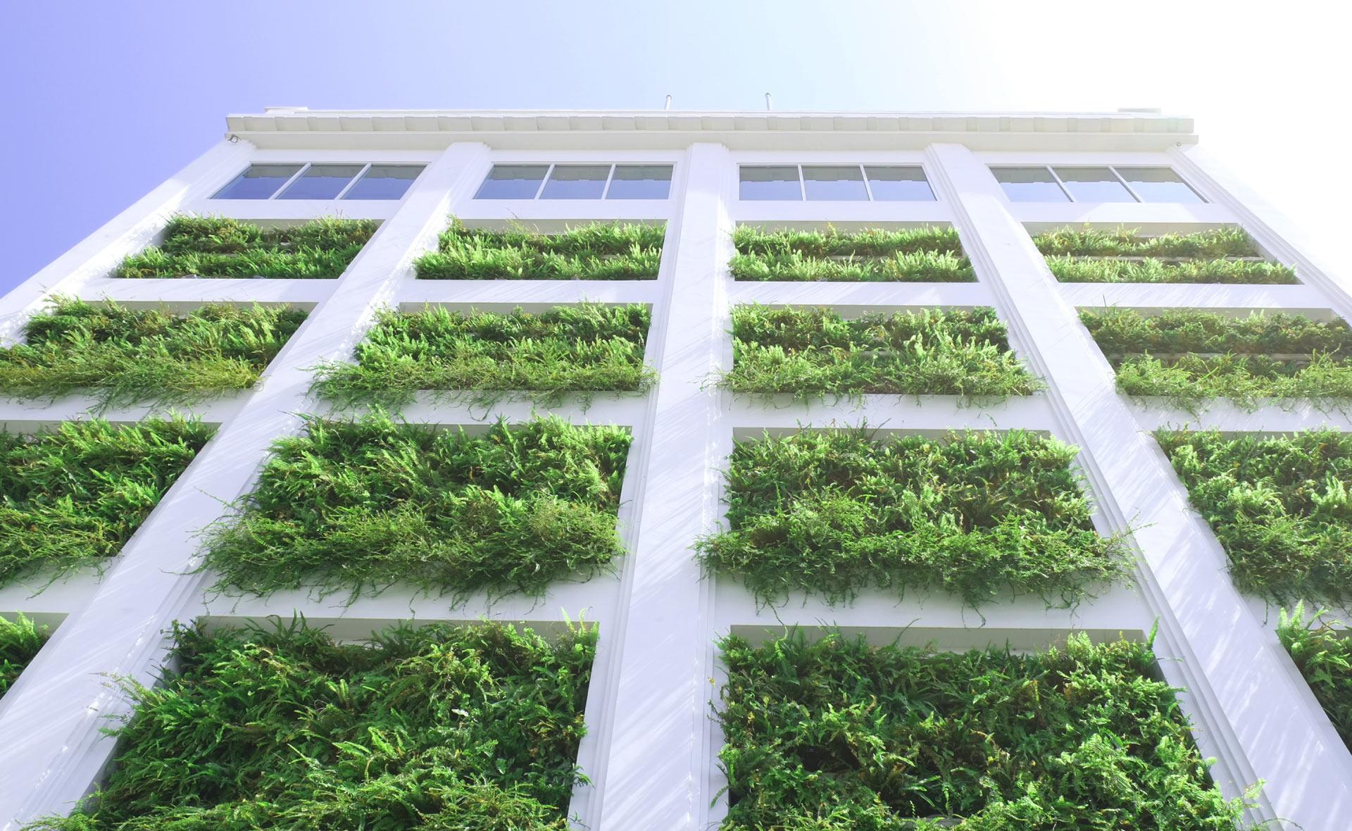 biomateriales-materiales-construccion-casas-sostenibilidad-renovables-sector-inmobiliario-cuidado-medioambiente-concienciacion