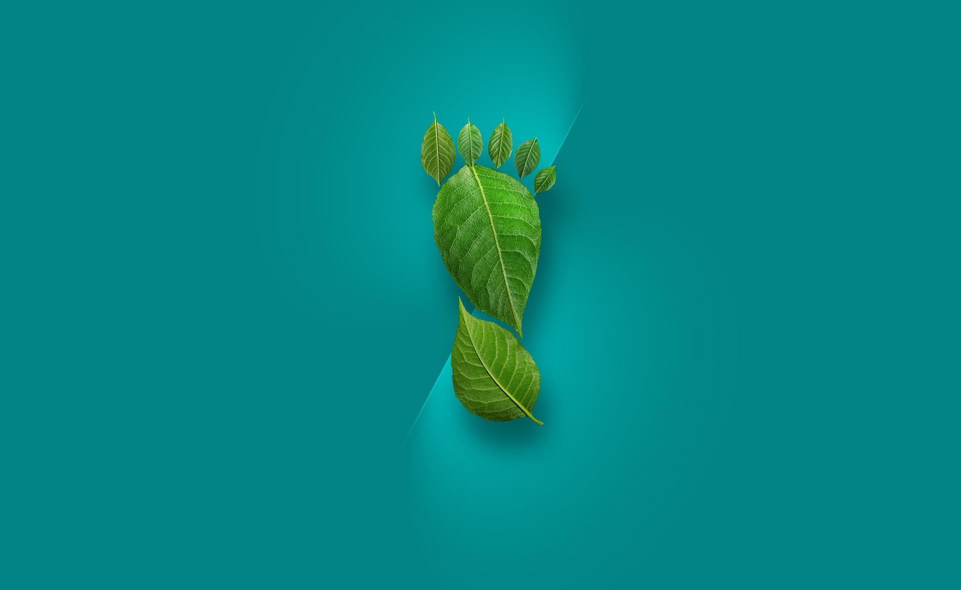 huella_carbono-sostenibilidad-cuidado-proteccion-reduccion-efectos-cambio-climatico-ods-carbono-oxigeno-efectos-nocivos-planeta