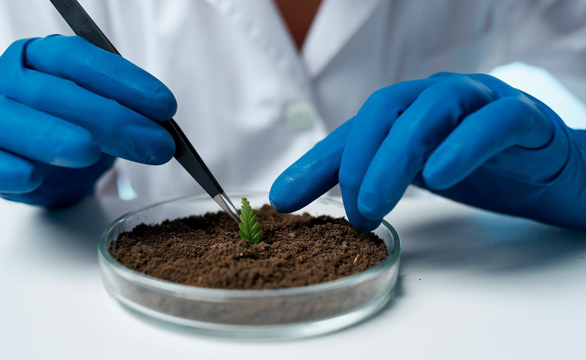 sostenibilidad-bbva-ciencia-ods-innovacion