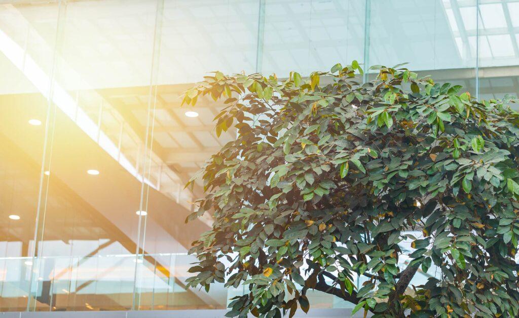 BBVA-Tecnologias_combatir_sostenibilidad_cambio_climatico-renovable-medioambiente-cuidado-planeta