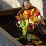 BBVA-compost-casero-alimentos-sostenibilidad-huerto-jardin-comida-saludable