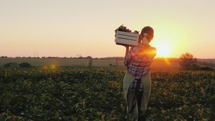 BBVA-sostenibilidad-PYMES-climate-HUB