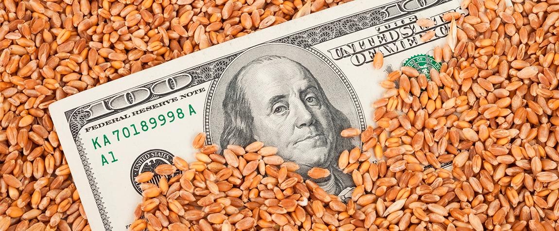 Fotografía de 'Commodities'- un dolor de cabeza para las economías de América Latina