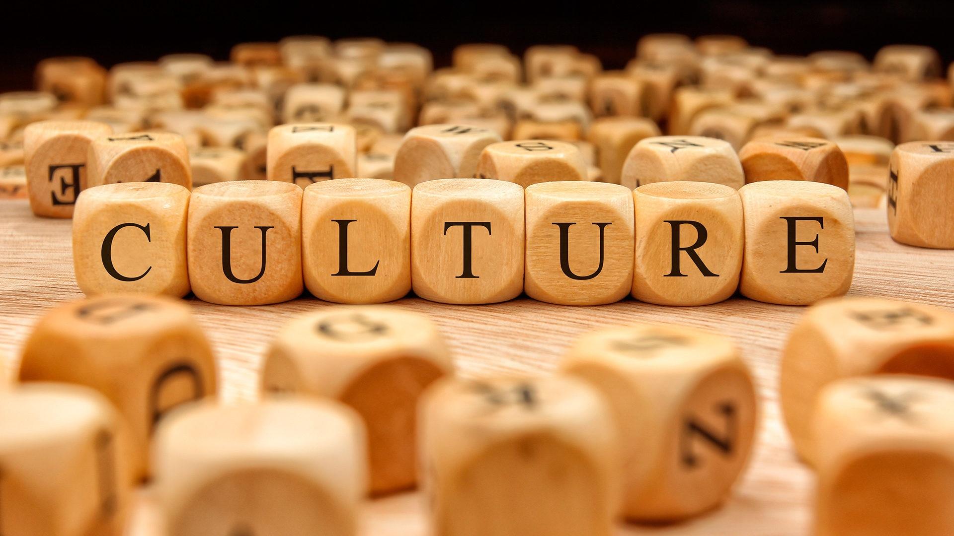 Education culture bbva