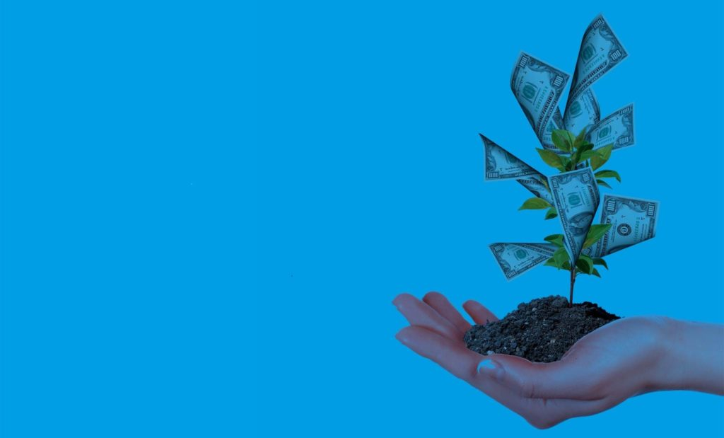 plant responsable banking reputation clean
