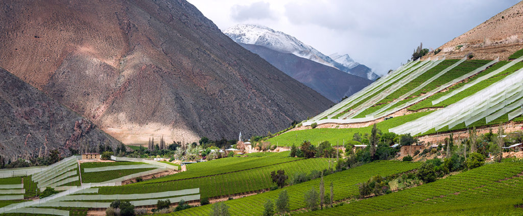Picture of Landscape Valley nature mountain Valle del Elqui Chile BBVA