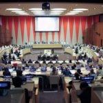 Picture of UN grants consultative status to BBVA Microfinance Foundation