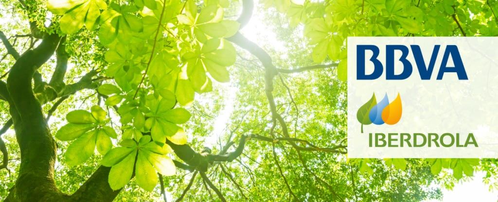 Iberdrola green loan